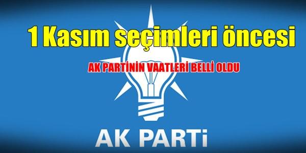 ak-partinin-seçim-vaatleri