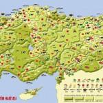 turkiyenin_tarimsal_uretim_haritasi