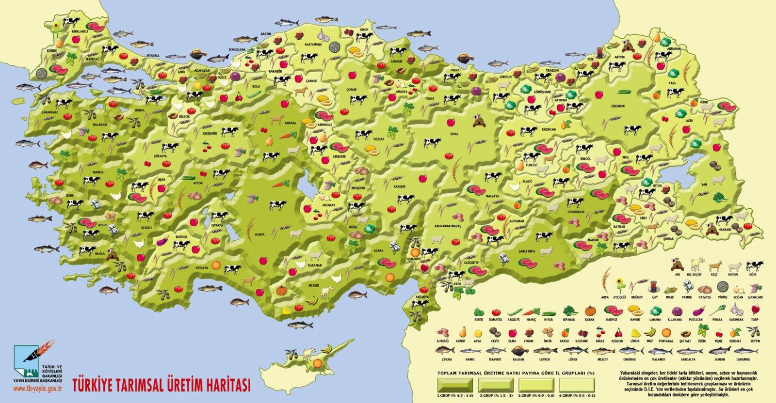 turkiyenin tarimsal uretim haritasi